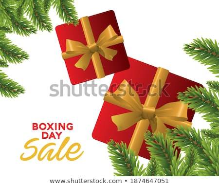 gift and text happy boxing day stock photo © nito