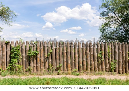 Old wooden trunk fence Stock photo © boggy