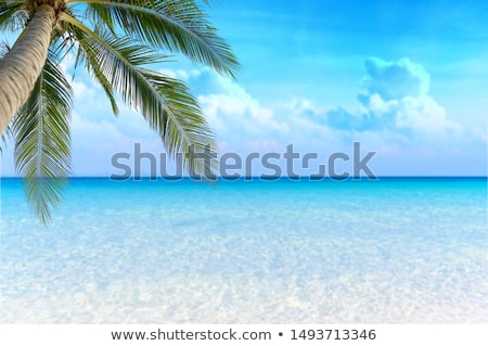 Tropical beach with bright sand and blue sea Stock photo © karandaev