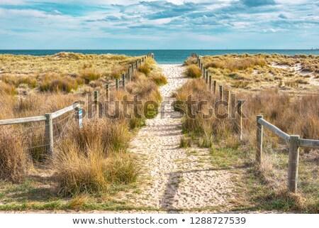 Мэн · пляж · Восход · Постоянный · влажный · песок - Сток-фото © jsnover