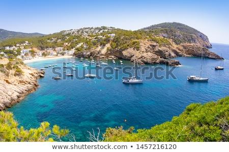 Ibiza Cala Vadella alse Vedella beach Stock photo © lunamarina