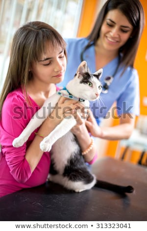 Young girl watching veterinary healthcare professional examine y Stock photo © ilona75
