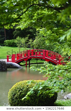 Pierre Baudis Japanese Garden in Toulouse, France Stock photo © nito