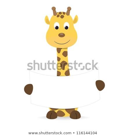 Cartoon giraffe holding a sign Stock photo © bennerdesign