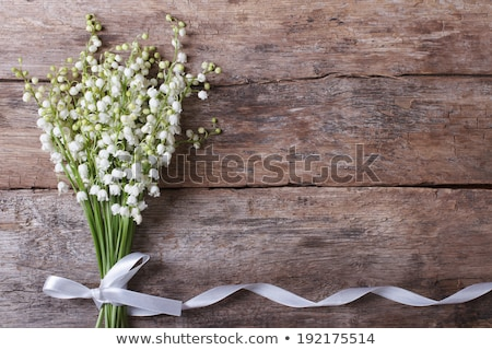 Happy Valentines Day. Horizontal background with lily flower, pastel colors. Handwritten calligraphi Stock photo © ikopylov