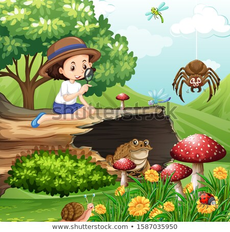 Scene with girl looking at insects in the garden Stock photo © bluering
