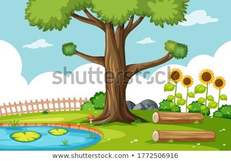 Natură parc mlaştină floarea soarelui scena ilustrare Imagine de stoc © bluering