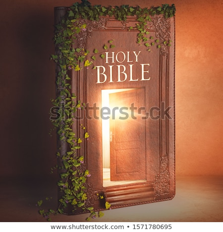 open bible 3 Stock photo © morrbyte
