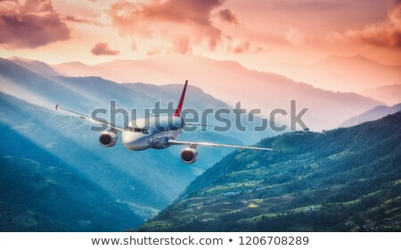 Airliner over red sunset Stock photo © ldambies