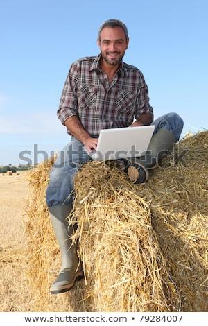 農家 · ノートパソコン · 干し草の山 · コンピュータ · 教育 · ファーム - ストックフォト © photography33