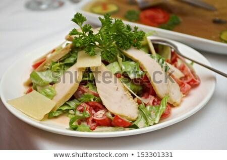 Chicken Salad Neapolitan Stok fotoğraf © Fanfo