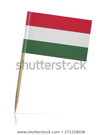 миниатюрный флаг Венгрия изолированный бизнеса Сток-фото © bosphorus