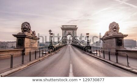 Puente colgante Budapest Hungría manana tiempo castillo Foto stock © AndreyKr