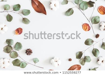 Arancione autunno floreale foglia giallo Foto d'archivio © olgaaltunina