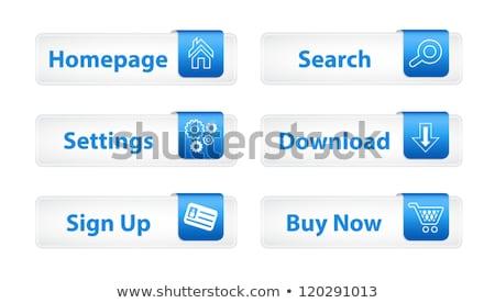 Internetowych przyciski niebieski zakładki sześć ikona Zdjęcia stock © liliwhite