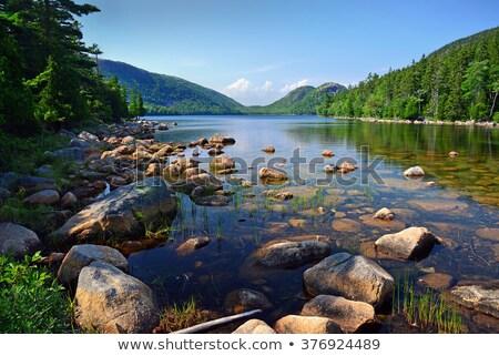 Jordânia lagoa reflexão bolha montanhas parque Foto stock © ca2hill