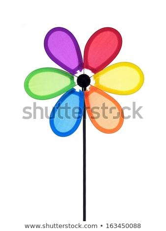цветок · хризантема · повернуть · синий · цветок · синий · небе - Сток-фото © kitch