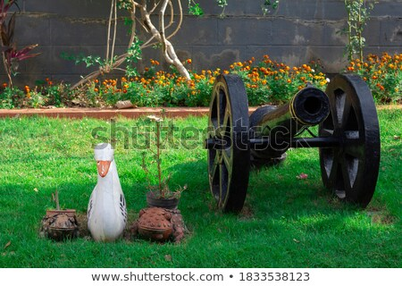 Old green cannon Stock photo © Givaga