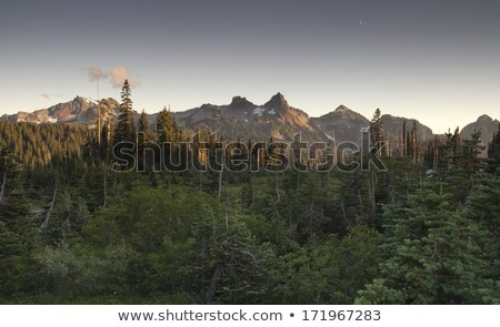 tatoosh range pinnacle castle unicorn boundary plummers peaks stock photo © cboswell