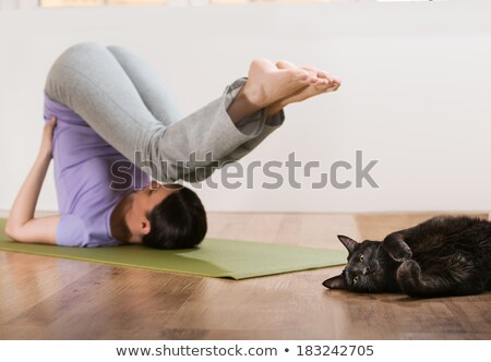 woman in a traditional stretching yoga pose at home with her cat stock photo © hasloo