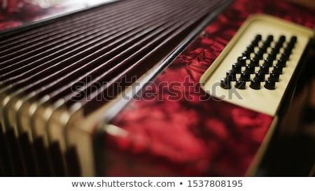 rojo · teclado · botón · negro - foto stock © tashatuvango