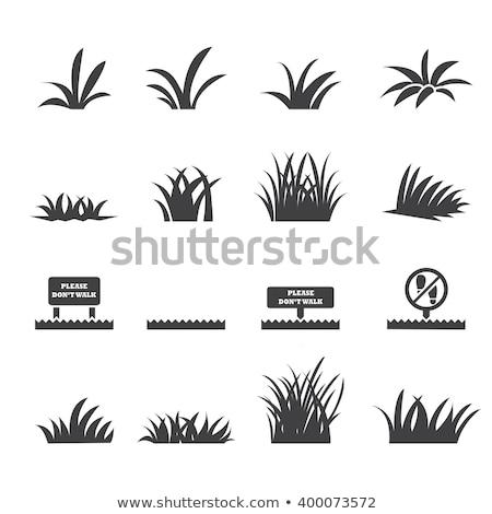 gaz · ikon · terv · zöld · információ · grafikus - stock fotó © glorcza