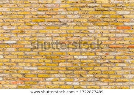 red harmonic brick wall stock photo © meinzahn
