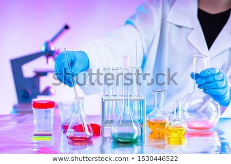 Vegyész hátsó nézet női tanár labor ruházat Stock fotó © diego_cervo