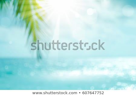 Elmosódott nyár pálmafák tengerpart nap naplemente Stock fotó © gladiolus