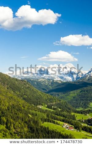 山 表示 雪 氷 スキー 登る ストックフォト © slunicko