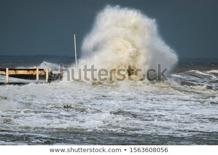 cold winter waves crashing Stock photo © morrbyte