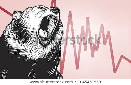 zuhan · medve · piac · pénzügyi · hanyatlás · üzlet - stock fotó © lightsource