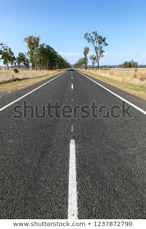 Straight road in rural Queensland Stock photo © silkenphotography