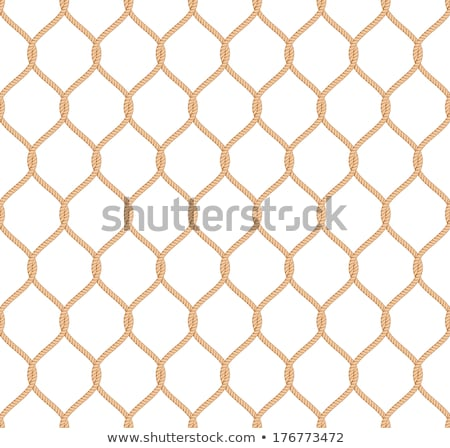 Details of old sea rope fishing nets Stock photo © vladacanon