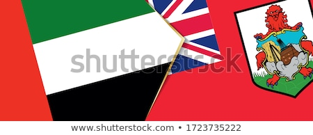 Emirati Arabi Uniti bandiere puzzle isolato bianco business Foto d'archivio © Istanbul2009