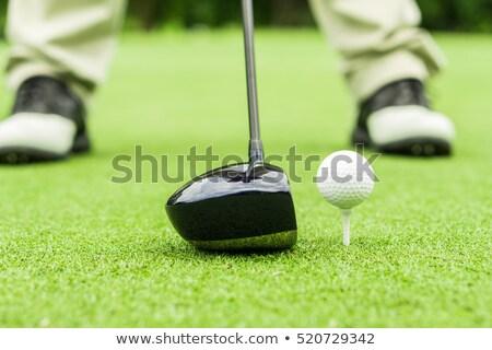 мяч · для · гольфа · драйвера · иллюстрация · вектора · прибыль · на · акцию · 10 - Сток-фото © morphart