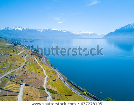 Road in Lavaux region, Vaud, Switzerland Stock photo © Elenarts