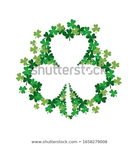 St · Patrick's · Day · klaver · sjabloon · groene · gelukkig · vier - stockfoto © gigi_linquiet