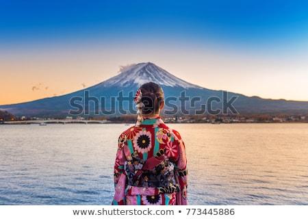 Geisha puesta de sol ilustración flores silueta femenino Foto stock © adrenalina