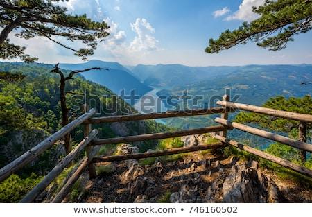 Tara mountain and Drina river canyon viewpoint Stock photo © goce