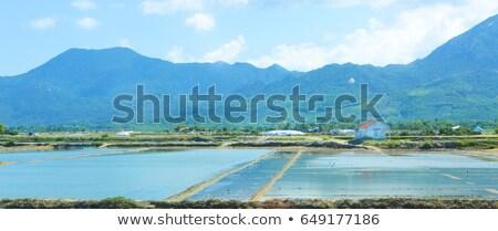 Landscape with shrimp feeding farms in Vietnam Stock photo © dashapetrenko