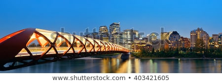 downtown calgary at night in alberta canada stock photo © pictureguy