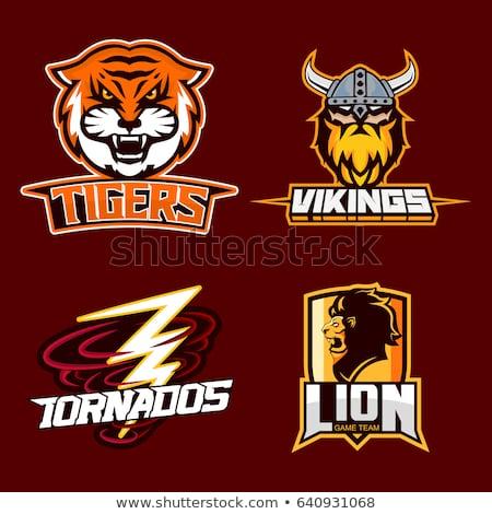 Lion American Football Ball Sports Mascot Stock photo © Krisdog