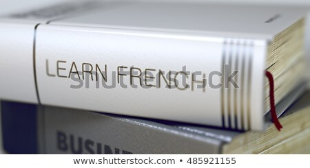 Book Title on the Spine - Learn French. 3D. Stock photo © tashatuvango
