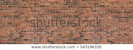 Criatividade parede de tijolos educação serviço branco Foto stock © tashatuvango
