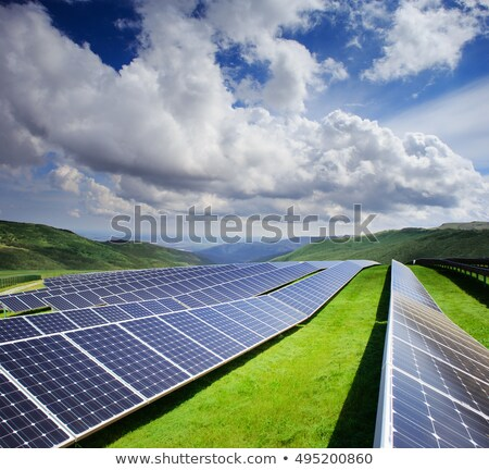 травянистый · зеленый · области · Blue · Sky · вектора · цветок - Сток-фото © orensila