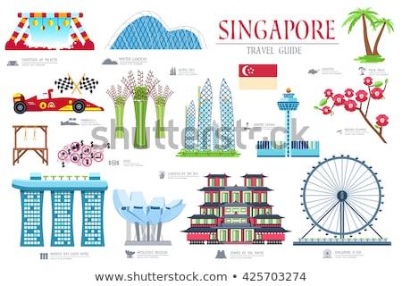 Singapur Flyer Palme Ansicht Blatt Vordergrund Stock foto © joyr