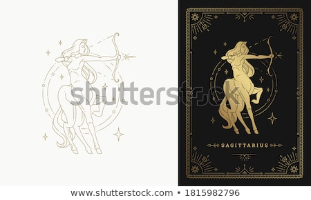 Horoscoop dierenriem teken astrologie borden Stockfoto © Krisdog