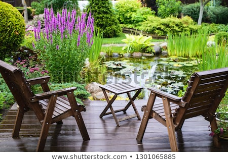 Primavera lagoa jardim água natureza paisagem Foto stock © neirfy