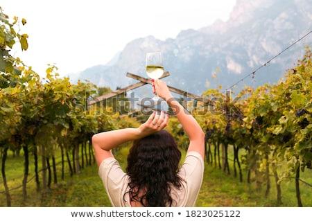 Młodych ludzi winnicy grupy winogron zbiorów kobieta Zdjęcia stock © boggy